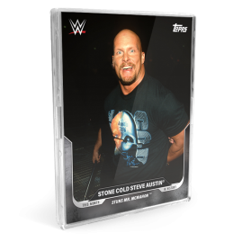 3-card Bundle - This Moment in WWE History - UK Cards 28-30