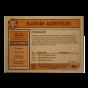 Topps ES - UCL Living Set Card #376 - Karim Adeyemi